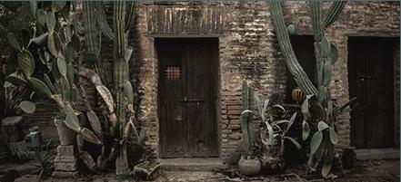 4 días en México: itinerario Halcón Peregrino