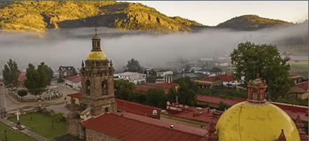6 días en México: Itinerario Venado Cola Blanca