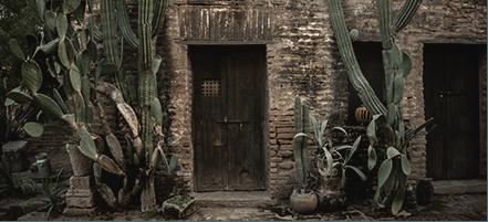 6 días en México: itinerario Trucha Aparique