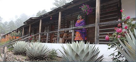 4 días en México: itinerario de viaje Ardilla